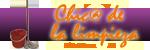 Chic@ de la limpieza