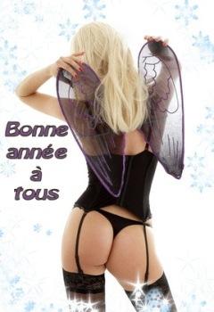 BONNE ET HEUREUSE ANNEE 2010 Nouvel11