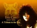 THE FOX ANNIVERSARY  11538910