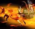 THE FOX ANNIVERSARY  11693810