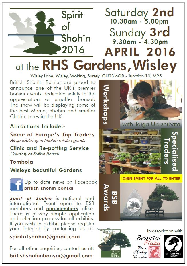 British Shohin Bonsai exhibition April 2016 Flyer10