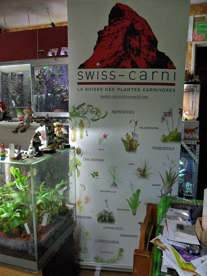 VIème Bourse aux Plantes Carnivores - 28 Juin 2015 - Jardin botanique de Neuchâtel - Page 2 Banier10
