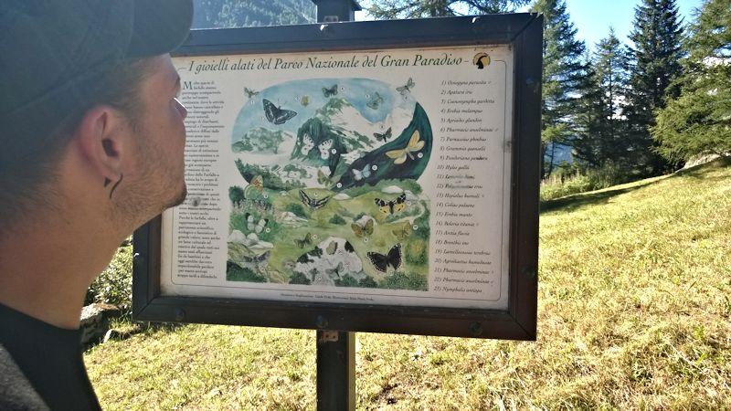 Jardin botanique alpin Paradisia, Cogne, Vallée d'Aoste (IT) Cogne_15