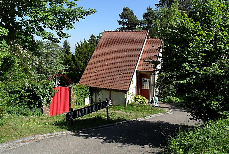 Jardin Botanique de Saverne en Alsace (Bas-Rhin - France) le 4 juin 2015 Col_de10
