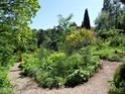 Jardin Botanique de Saverne en Alsace (Bas-Rhin - France) le 4 juin 2015 Col_de25