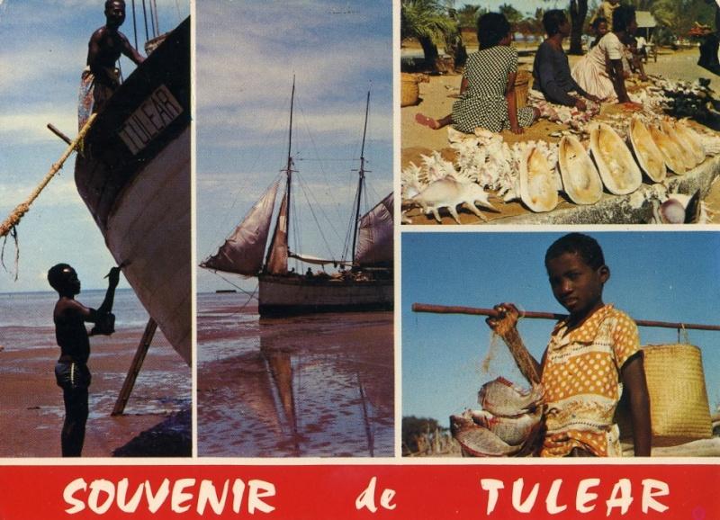 [Campagne] TULEAR - IFATY - SAINT-AUGUSTIN - ANAKAO - Page 12 Tulyar10