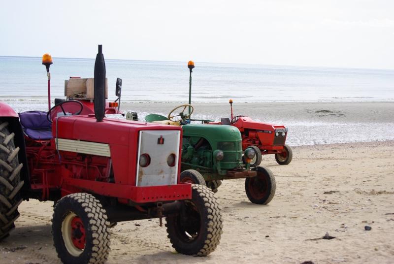 Irlande 2015 - Wild West Coast  - VVVVV- Imgp7118