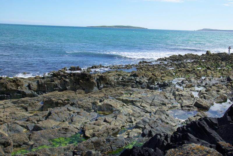 Irlande 2015 - Wild West Coast  - VVVVV- Imgp7213