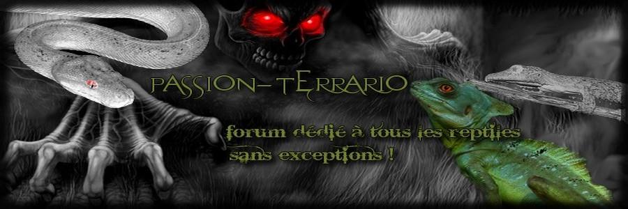 Forum Passion Terrario