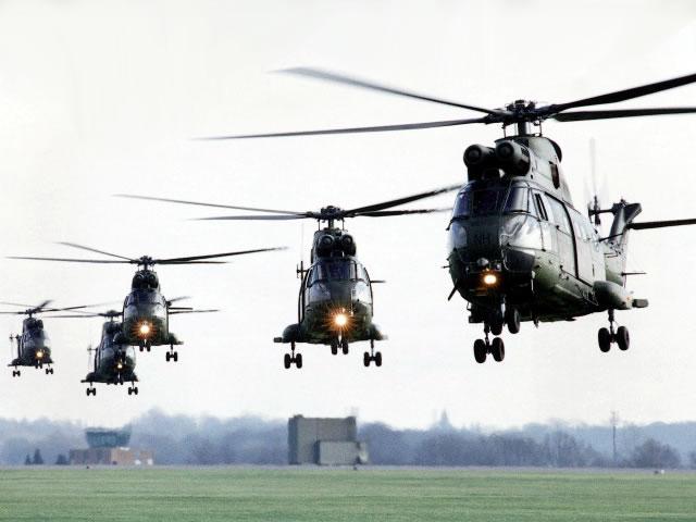 A Aviação do Exército Brasiseiro Cougar11