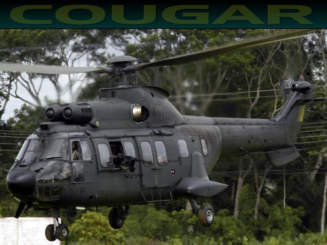 A Aviação do Exército Brasiseiro Cougar13