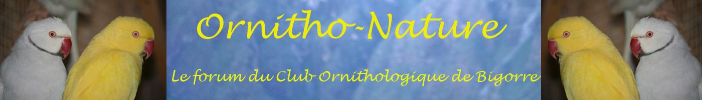 Ornitho-Nature