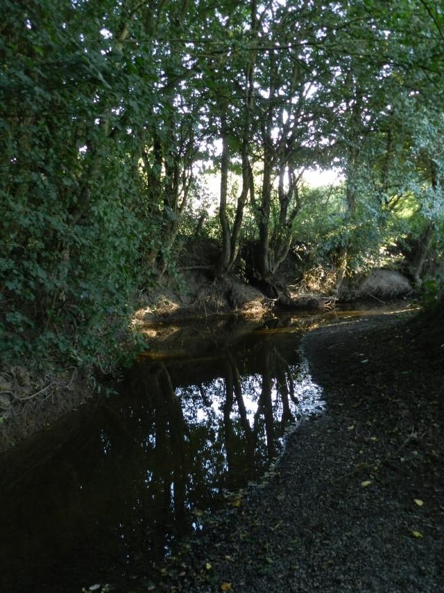 Promenade dans la rivière en juillet 2015 Vauvyr75