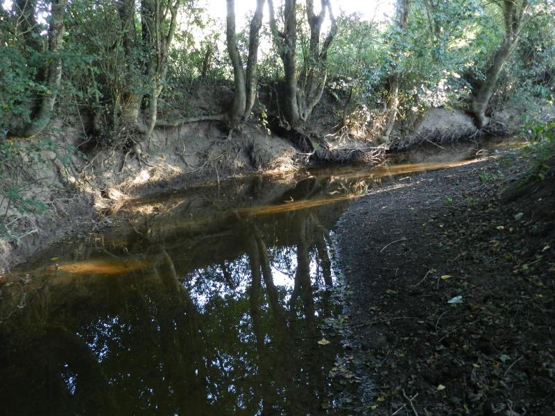 Promenade dans la rivière en juillet 2015 Vauvyr77