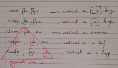 Trouver Le Radical D Un Verbe Deponent En Latin