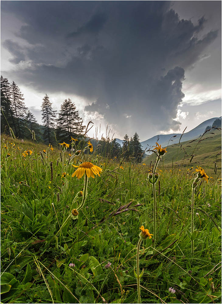 Avant l'orage  Img_9713