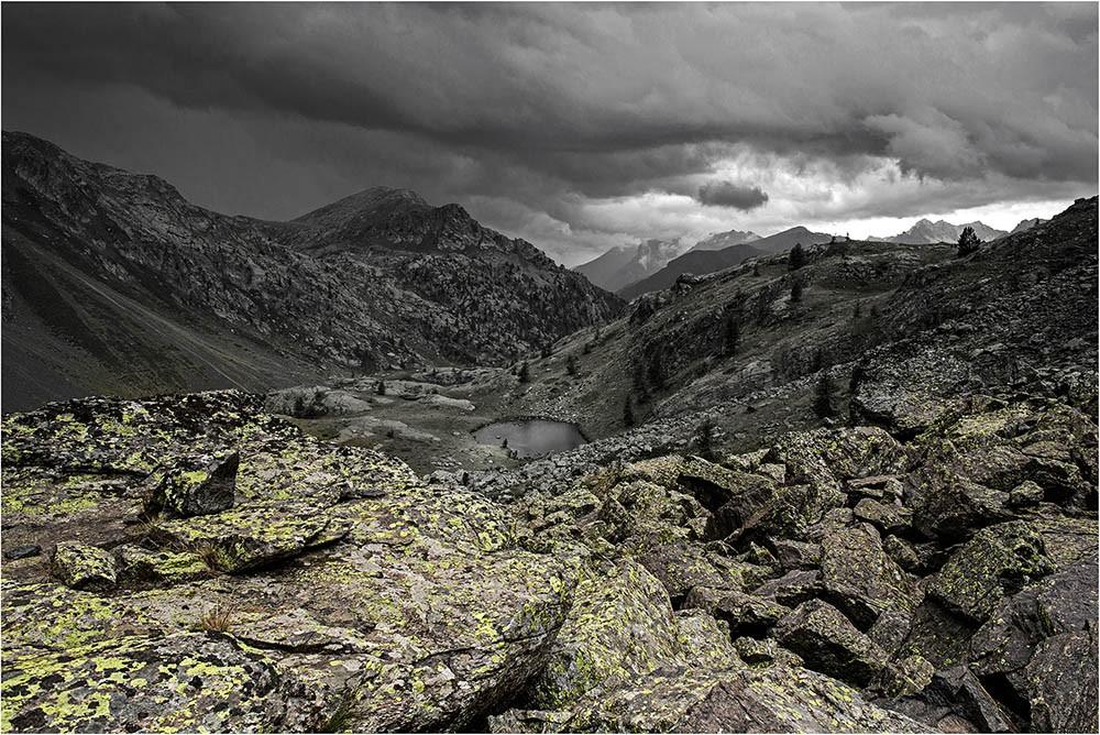Lichen rock Img_9911