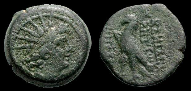"""bronze séleucide pour Antiochos VIII """"Grypos"""" Sngis_10"""
