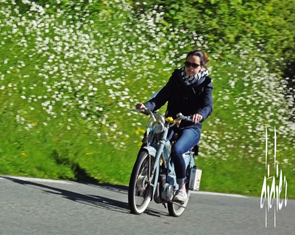 """[62][24/05/2015] 5ème édition """"Sur la route des vacances"""" - Page 5 Dscf1518"""