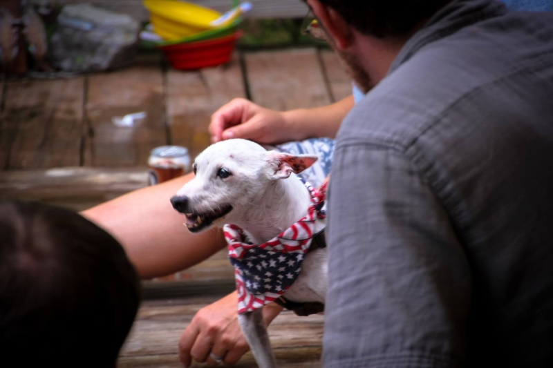All Georgia Dubs Members are invited to a July 4th Party at the Bender Compound. 11698910
