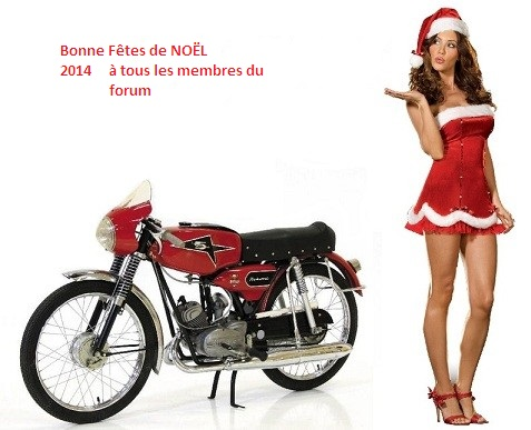 Pin-Up 50cc 40960310