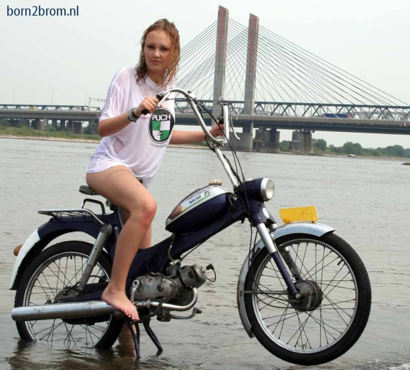 Pin-Up 50cc Puch_t10