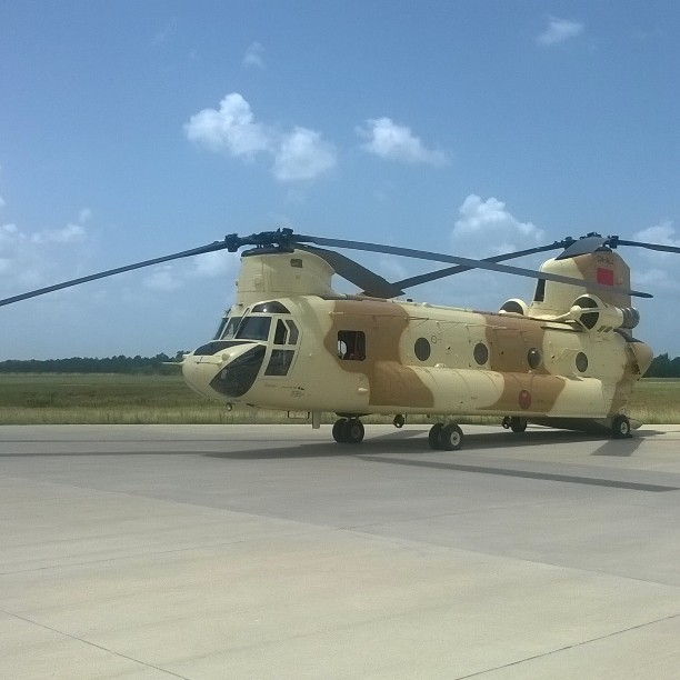 CH-47D CHINOOK des Forces Royales Air  11208210