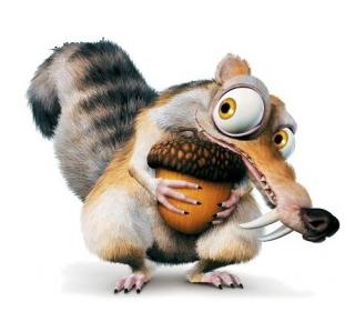 C'est quoi un écureuil griffu ? Ecureu10