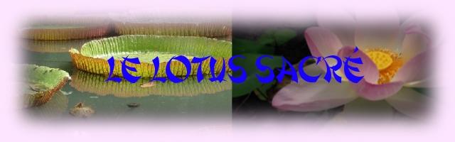 Le lotus sacré