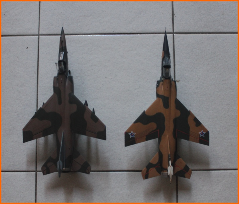 Mirage F1 CZ 1/48 Esci / Italeri Img_9314
