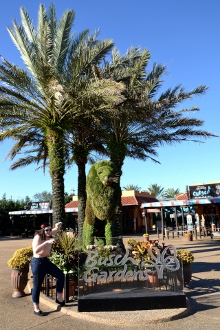 The Girly Belgian Waffles have fun in Louisiana, the Bahamas and Florida (October 2014) - UPDATE: Epcot - Page 24 A_effa12