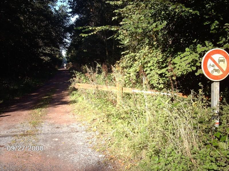 Forêt Domaniale de Raismes-Saint Amand-Wallers Waller11