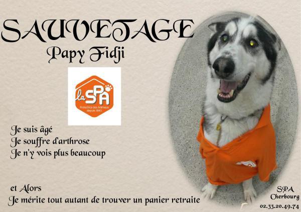 FIDJI type HUSKY 2001 dynamique gentil (m ) SAUVETAGE REFU50 - Page 3 Papy_f10