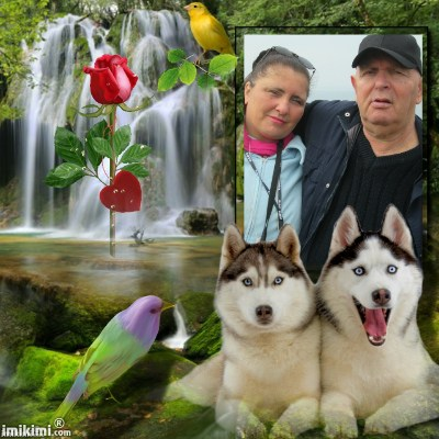 Montage de ma famille - Page 2 2zxda-49