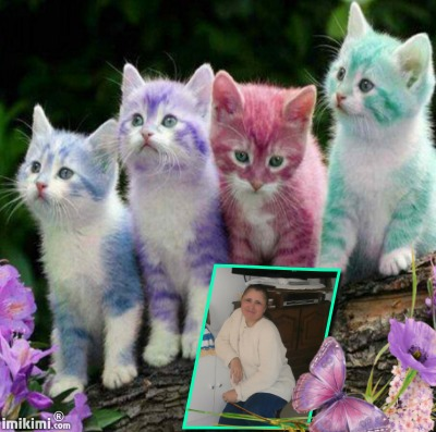 Montage de ma famille - Page 2 2zxda-53