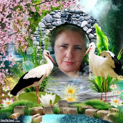 Montage de ma famille - Page 2 2zxda-85