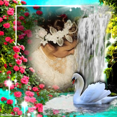 Montage de ma famille - Page 2 2zxda-99