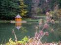 Bienvenue dans les Vosges Thumb_11