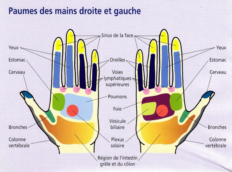 Points de votre main à compresser pour guérir Main310