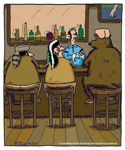 Humour en image du Forum Passion-Harley  ... - Page 2 56255910