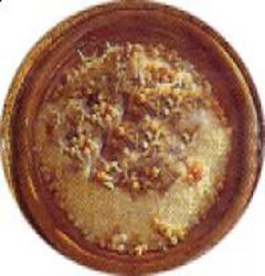 Art culinaire Souiri et Cuisine Marocaine Cousco10