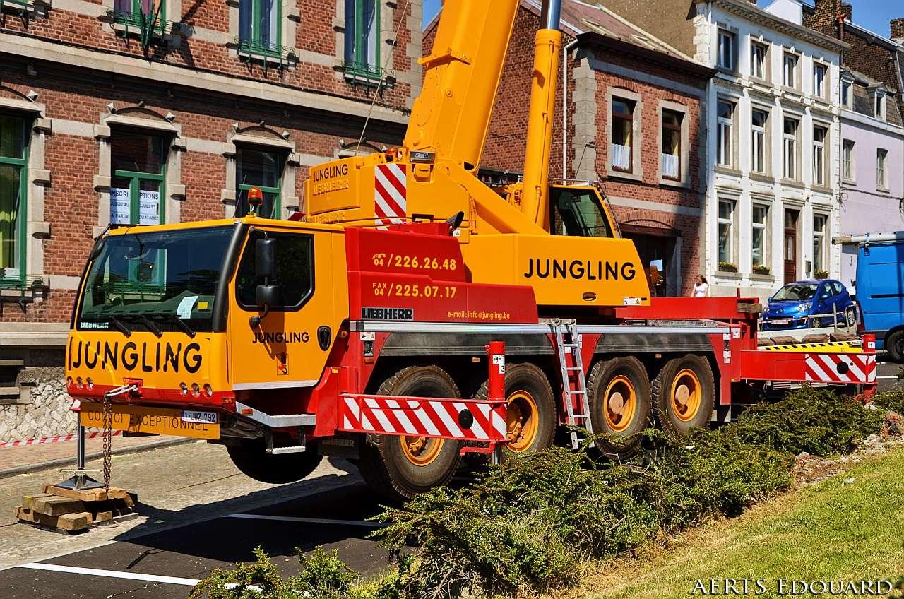 Les grues de JUNGLING (Belgique) - Page 2 Dsc_6019