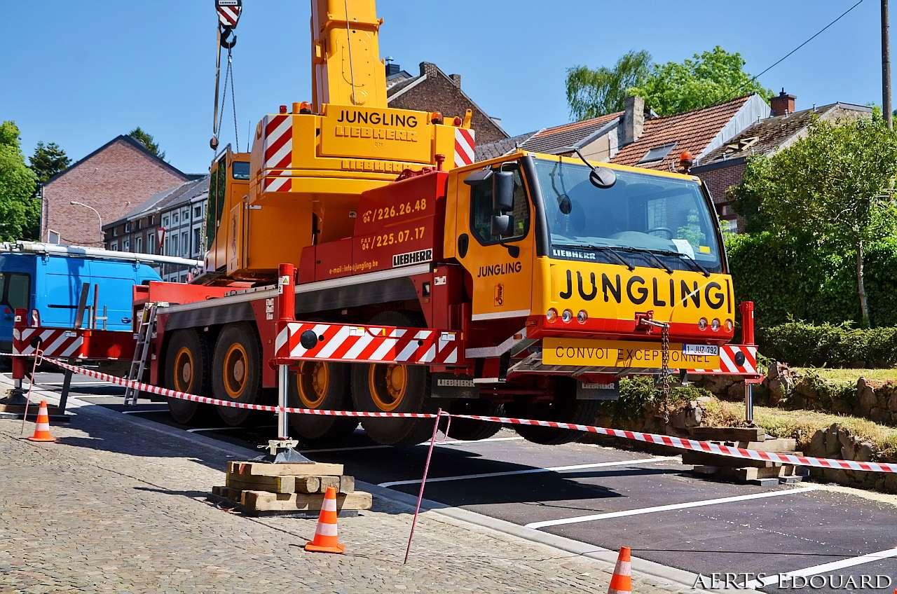 Les grues de JUNGLING (Belgique) - Page 2 Dsc_6020