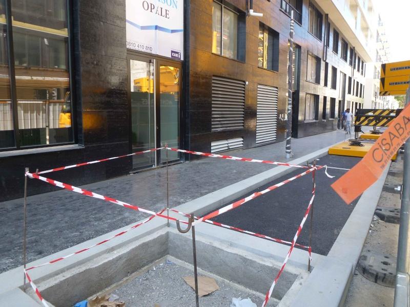 Rue de Meudon - Page 2 P1370515