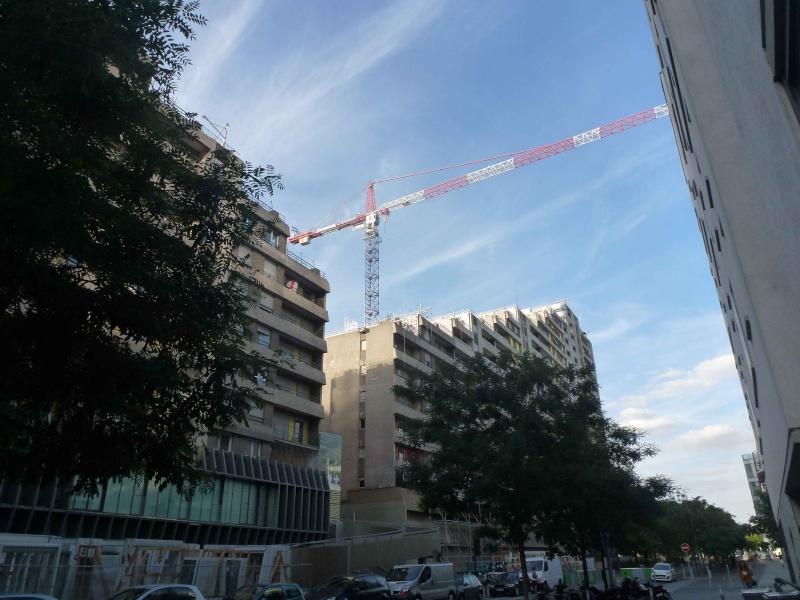Rénovation du quartier du Pont-de-Sèvres (ANRU) - Page 3 P1380211