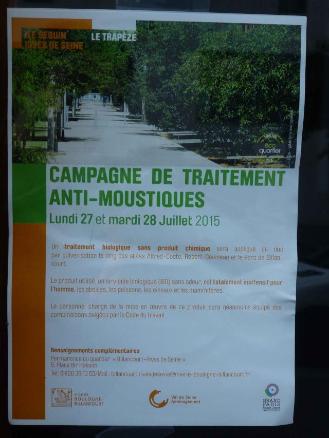 Présence de moustiques P1380226