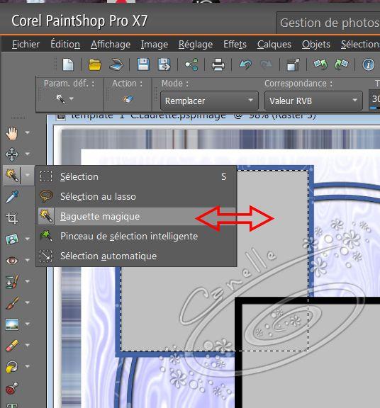 Remplir un Template scrap avec Psp Image125