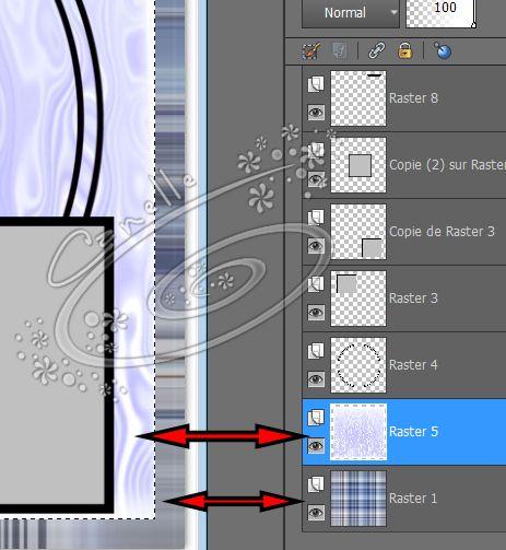 Remplir un Template scrap avec Psp Image812