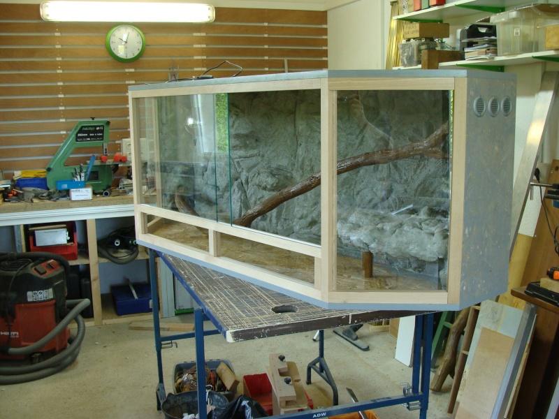 Projet Terrarium Dsc01210