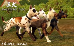 Собаки - Страница 7 Image15